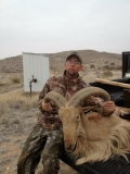 """24"""" Ram taken near Roswell by Gene West."""