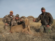 gallery-pKyle (center), Wes (left), and Omar (right) with Kyle's Southern NM ram!ublic-New-Mexico-hunters-harvest-barbary-sheep-5