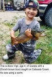 fishing-report-Cabrestro-Creek-Brown-trout-05_29_2018-NMDGF