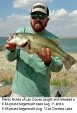 fishing-report-Conchas-Lake-largemouth-bass-08_14_2018-NMDGF