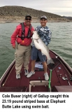 fishing-report-Elephant-Butte-Lake-striped-bass-04_09_2019-NMDGF