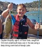 fishing-report-Navajo-Lake-smallmouth-bass-07_10_2018-NMDGF