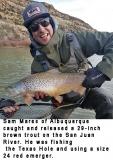 fishing-report-San-Juan-River-brown-trout-01_29_2019-NMDGF