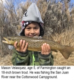 fishing-report-San-Juan-river-brown-trout-11_27_2018-NMDGF