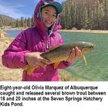 fishing-report-Seven-Springs-brown-trout-04_02_2018-NMDGF