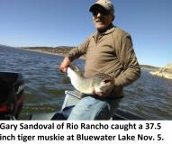 fishing-report-bluewater-tiger-muskie-11-12-2019-NMDGF
