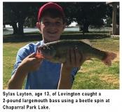 fishing-report-chaparral-park-lake-largemouth-bass-08_06_2019-NMDGF