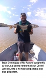 fishing-report-cochiti-lake-norhtern-pike-06_11_2019-NMDGF