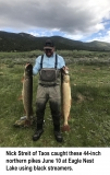 fishing-report-eagle-nest-lake-norhtern-pike-06_11_2019-NMDGF