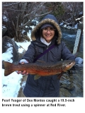 fishing-report-red-river-brown-trout-12-24-2019-NMDGF