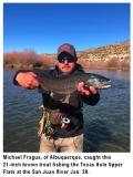 fishing-report-san-juan-river-brown-trout-02-04-2020-NMDGF