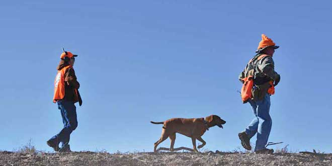 Clarence Seagraves, a volunteer guide, and his dog Copper, lead the way for a youth hunter during the Armendaris Youth Small Game Classic. New Mexico Wildlife magazine, NMDGF