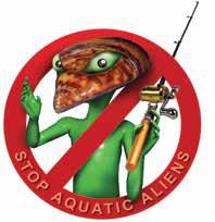 Commission adopts new rules to combat Aquatic Invasive Species.  New Mexico Wildlife magazine, NMDGF.
