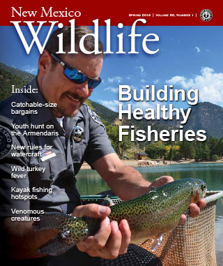 Building Healthy Fisheries - New Mexico Wildlife magazine - Volume 59, Number 1, Spring 2016, New Mexico Game and Fish (NMDGF).