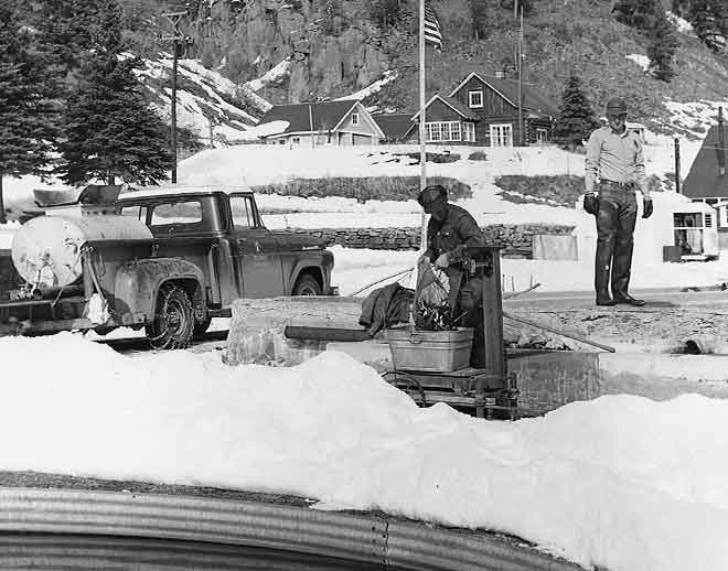 Loading cutthroat trout into delivery truck at Seven Springs Hatchery. Photo: NMDGF. (Making Tracks: A Century of Wildlife Management. (History of the New Mexico Department of Game and Fish).