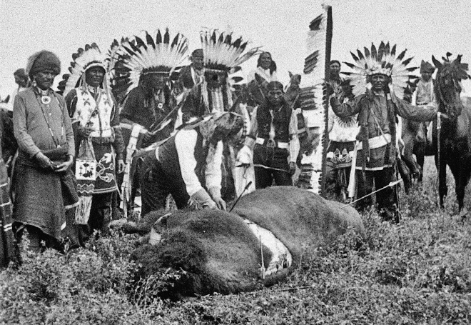 Geronimo skinning buffalo after hunt, circa 1900. Photo: Keystone View Co., Museum Of New Mexico, Neg. No. 89405. New Mexico Wildlife magazine, Vol-48, Num-4 Winter 2003. (Making Tracks: A Century of Wildlife Management. (History of the New Mexico Department of Game and Fish).
