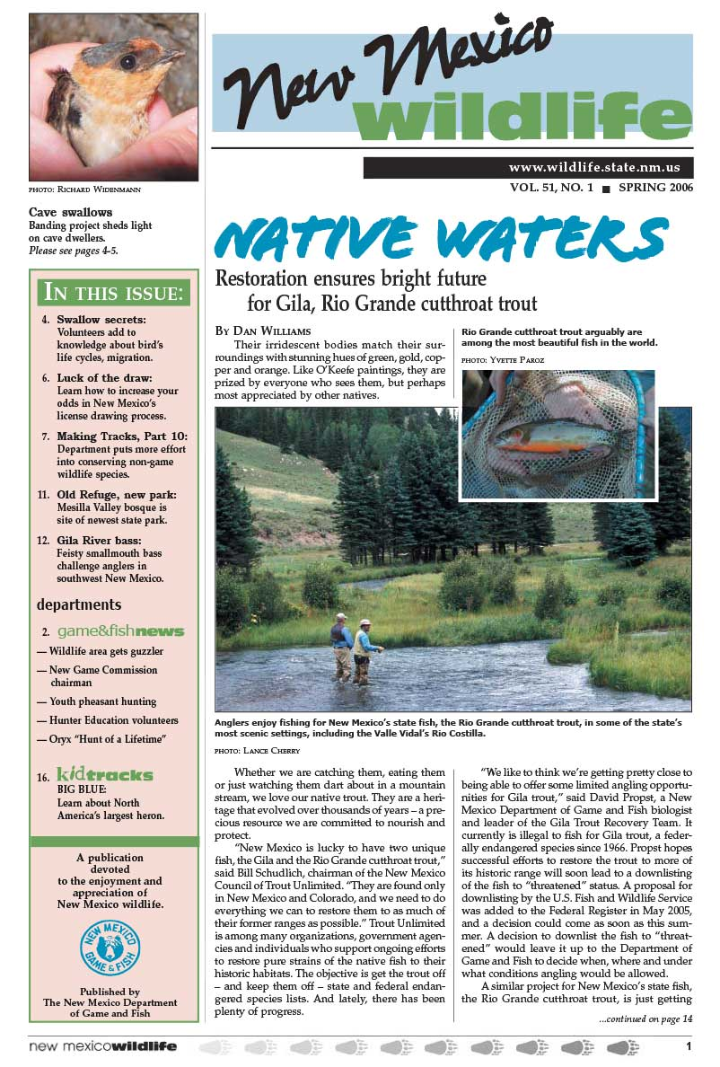 Native Waters: Restoration Ensures Bright Future for Gila, Rio Grande Cutthroat Trout - New Mexico Wildlife magazine - Volume 51, Number 1, Spring 2006, New Mexico Game and Fish (NMDGF).