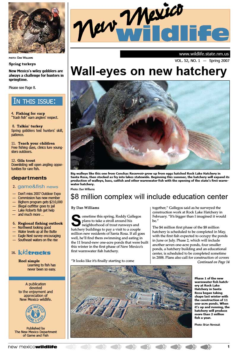 Walleyes on New Hatchery: $8 Million Complex will Include Education Center - New Mexico Wildlife magazine - Volume 52, Number 1, Spring 2007, New Mexico Game and Fish (NMDGF).