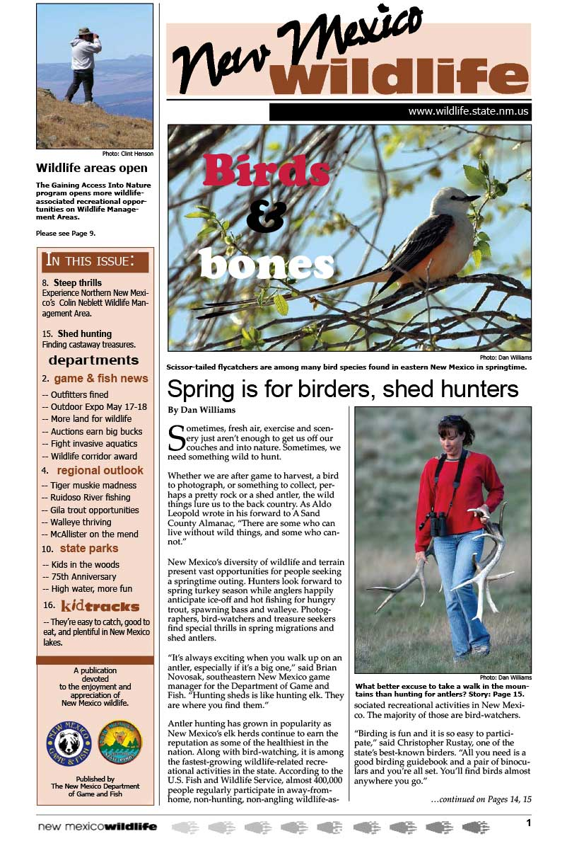 Birds and Bones: Spring is for Birders, Shed Hunters - New Mexico Wildlife magazine - Volume 53, Number 1, Spring 2008, New Mexico Game and Fish (NMDGF).