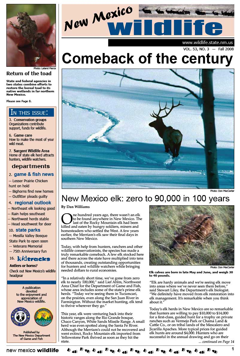 Comeback of the Century: New Mexico Elk, Zero to 90,000 in 100 Years - New Mexico Wildlife magazine - Volume 53, Number 3, Fall 2008, New Mexico Game and Fish (NMDGF).