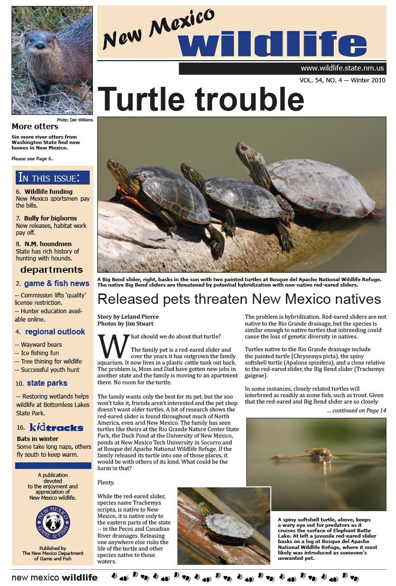 Turtle Trouble: Released Pets Threaten New Mexico Natives - New Mexico Wildlife magazine - Volume 54, Number 4, Winter 2010, New Mexico Game and Fish (NMDGF).