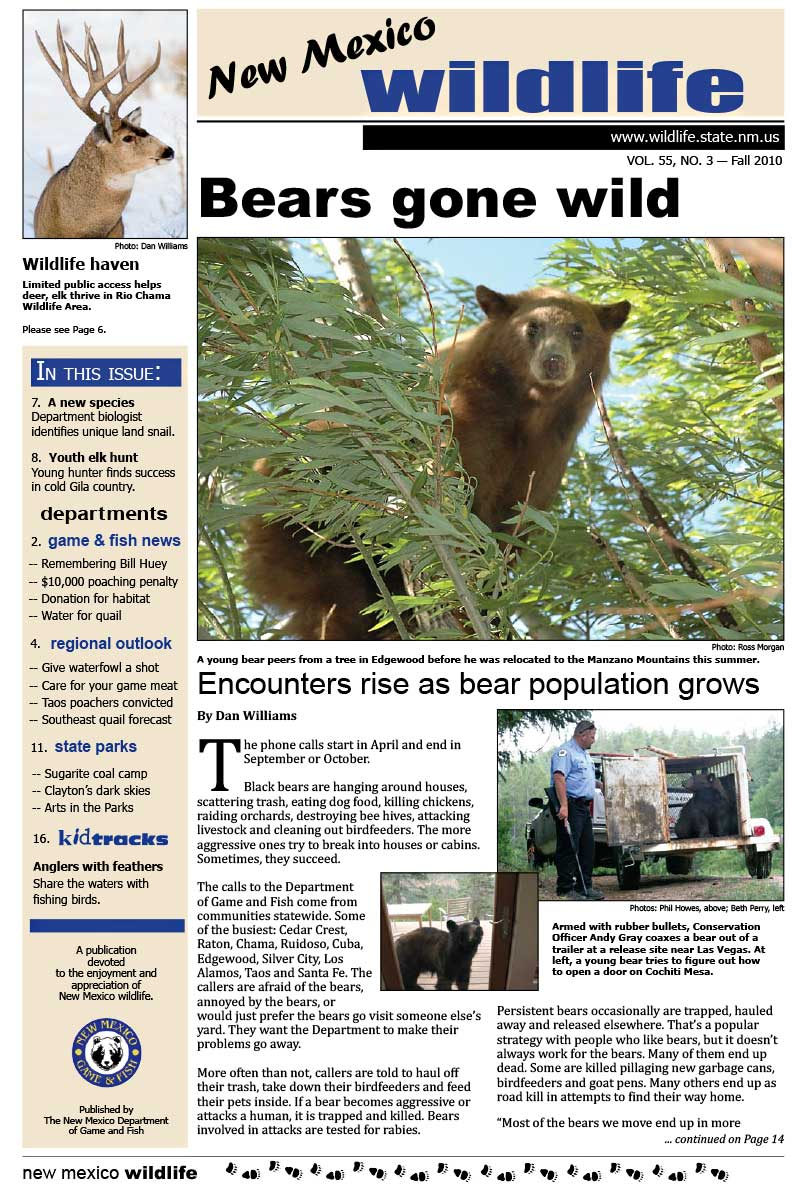 Bears Gone Wild: Encounters Rise as Bear Population Grows - New Mexico Wildlife magazine - Volume 55, Number 3, Fall 2010, New Mexico Game and Fish (NMDGF).