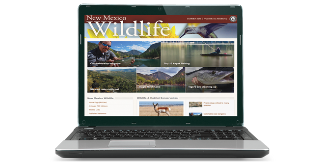 New magazine online format for mobile devices and desktops - NMDGF, New Mexico Wildlife magazine Spring 2017 Vol60, Num1, New Mexico Department of Game and Fish.