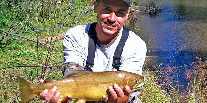 Restoration of gila trout new mexico wildlife magazine for Willow creek fishing