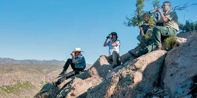 Staff from the Department of Game and Fish and U.S. Forest Service use binoculars to locate bighorn. Photo by Martin Perea, New Mexico Wildlife magazine Winter 2018 Vol61, Num1, New Mexico Department of Game and Fish.