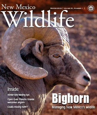 New Mexico Wildlife magazine - Volume 61, Number 1, Winter 2018, New Mexico Game and Fish (NMDGF).