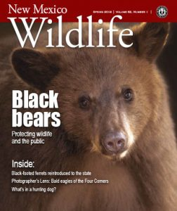 New Mexico Wildlife magazine - Volume 62, Number 1, Spring 2019, New Mexico Game and Fish (NMDGF).